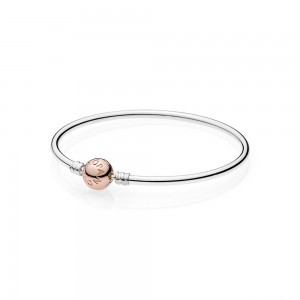 Jonc Moments en Argent, Fermoir PANDORA Rose